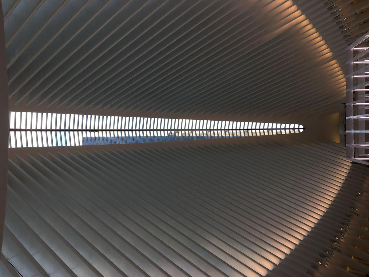 The Oculus - the multi-million dollar train hum near the 9/11 memorial.