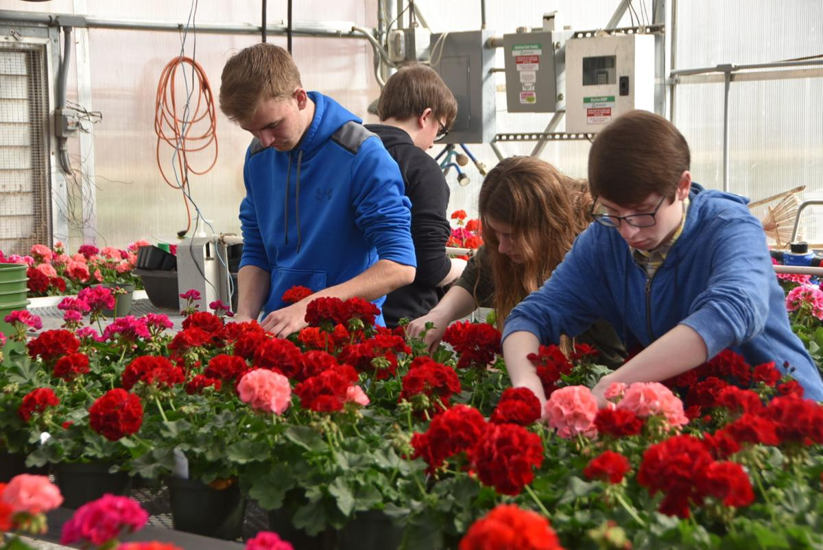 Beatrice High School Students Host Annual Plant Sale Education
