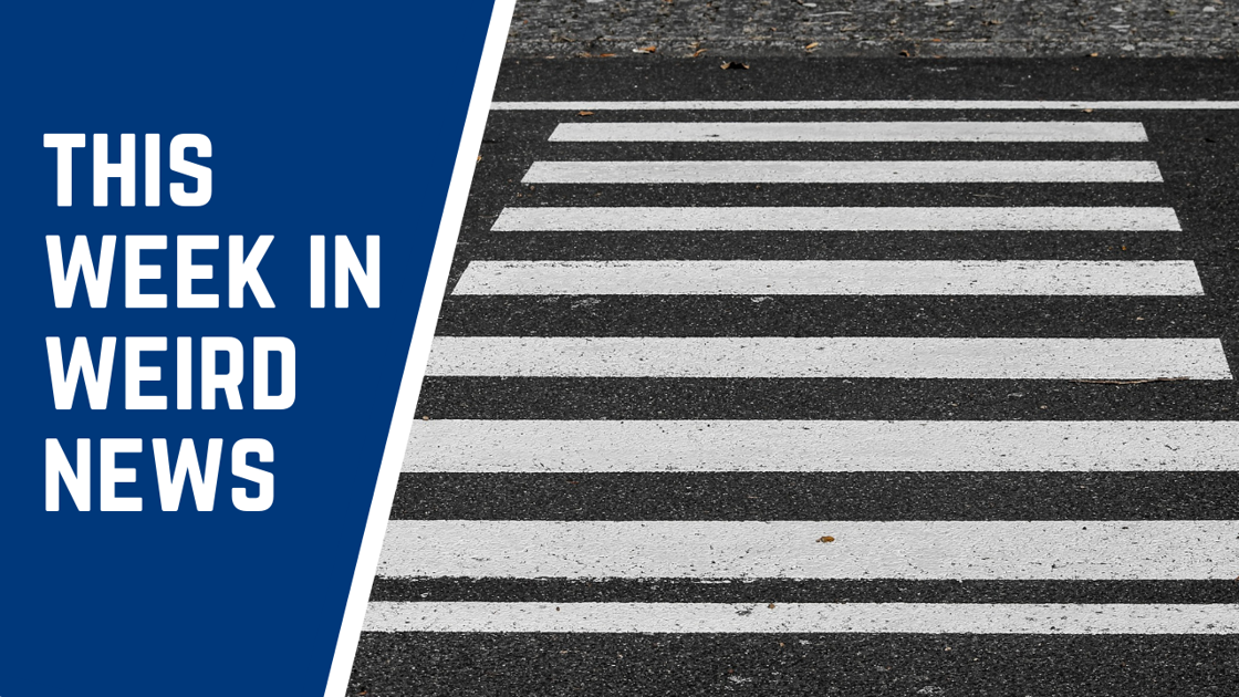 Naked criminals and a misspelled school crosswalk make up some of this week's weirdest news