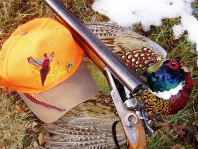 Pheasant Season