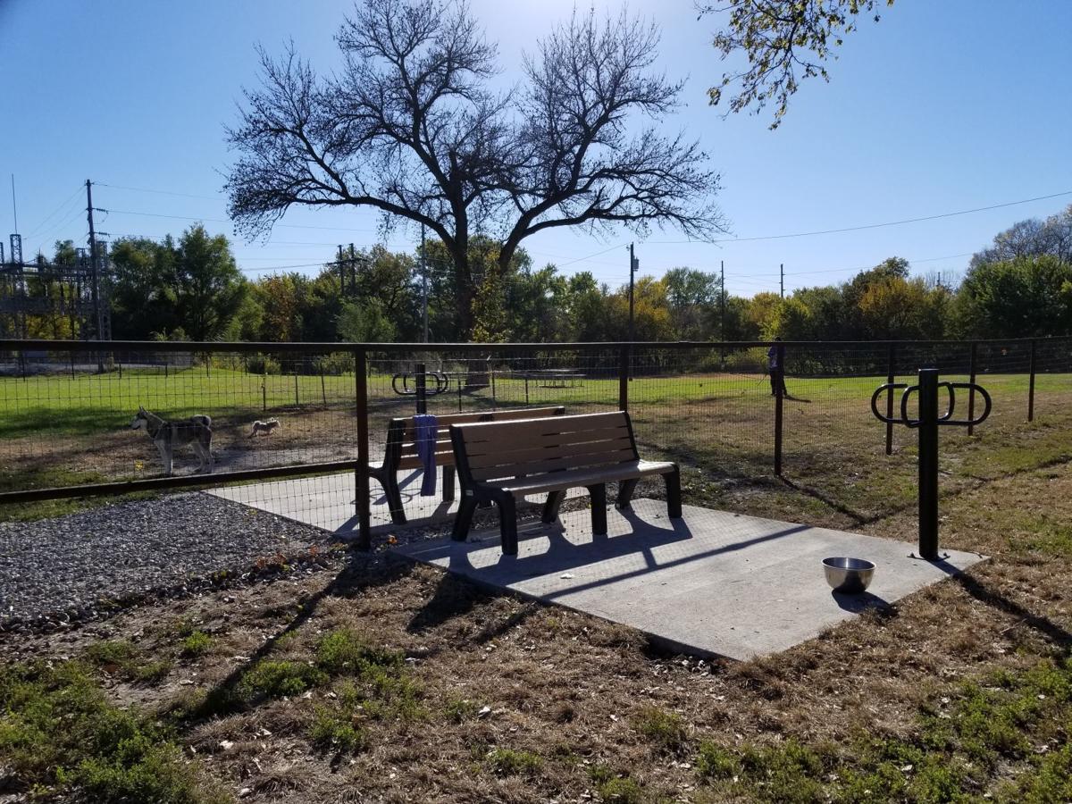Big Blue Dog Park