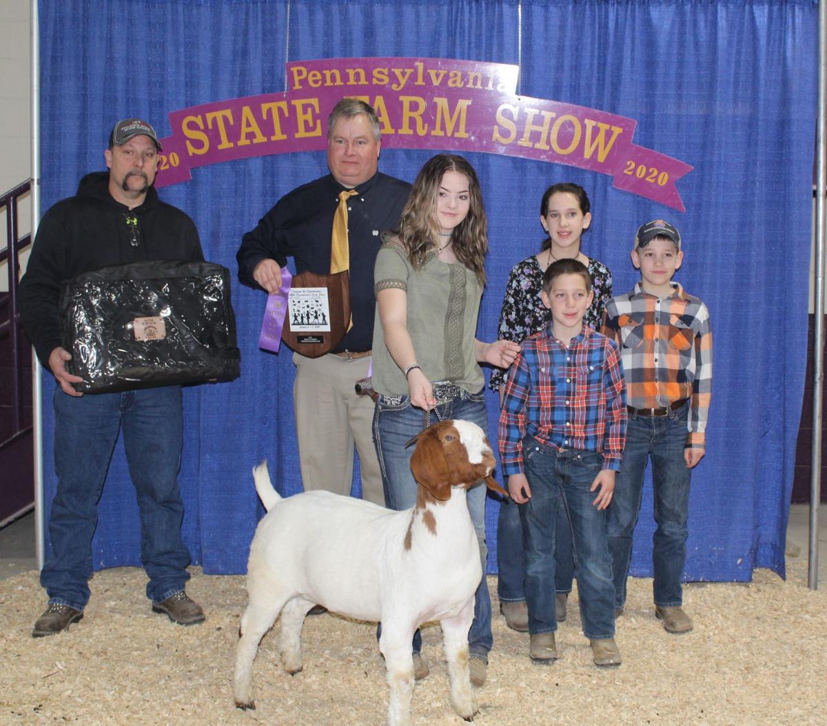 Lankey shows champion, reserve champion percentage doe