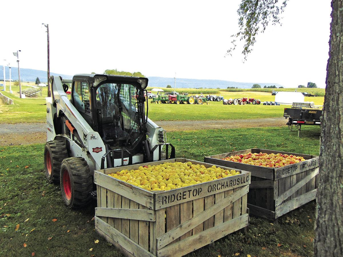 Southern Cove to host tractor show