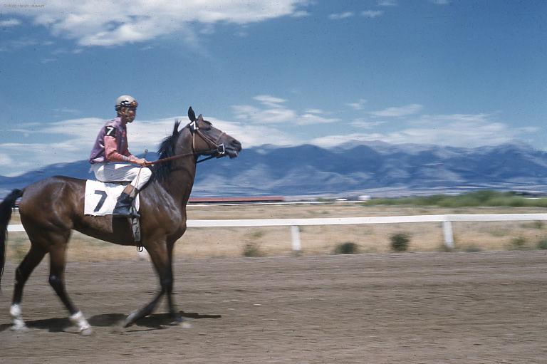 Beaumont Horse jockey