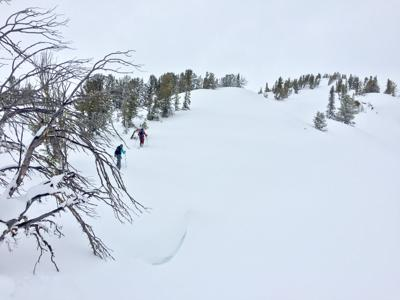 skiing winter backcountry