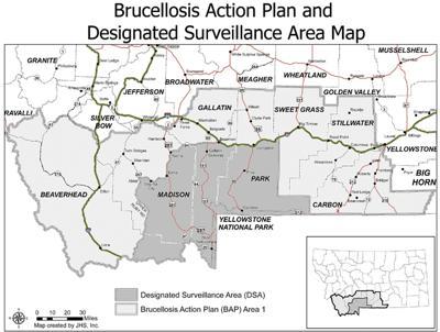 Brucellosis DSA map