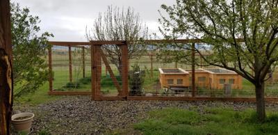 Nancy garden fence