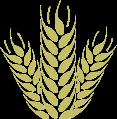 Wheat graphic