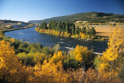 Madison River This is Montana