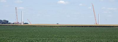 Towers over corn