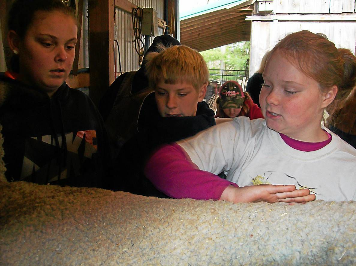 Blue Mountain 4-H Livestock Club 'aims for 100'