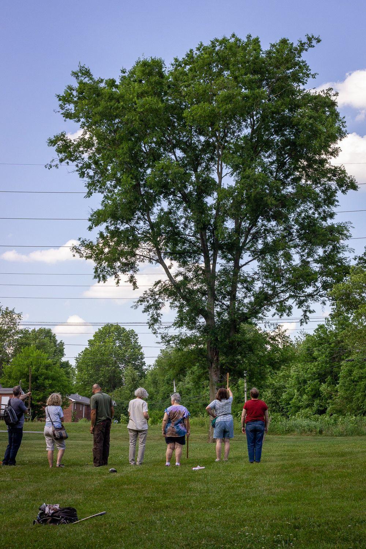 Sierra Club trains for Big Trees of BG project