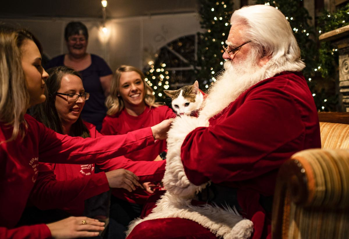 Southcentral Veterinary celebrates 10 years with annual holiday event