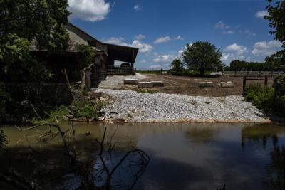 Gasper River fish kill update