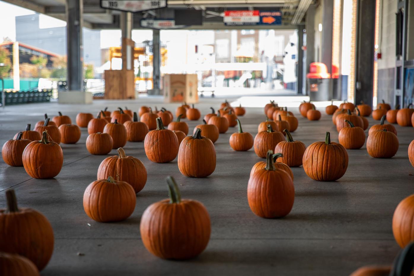 News_hotrodspumpkin100920-2.jpg