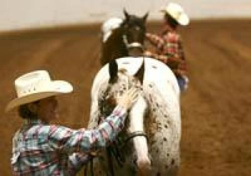 Horse competition focuses on Appaloosas | Community