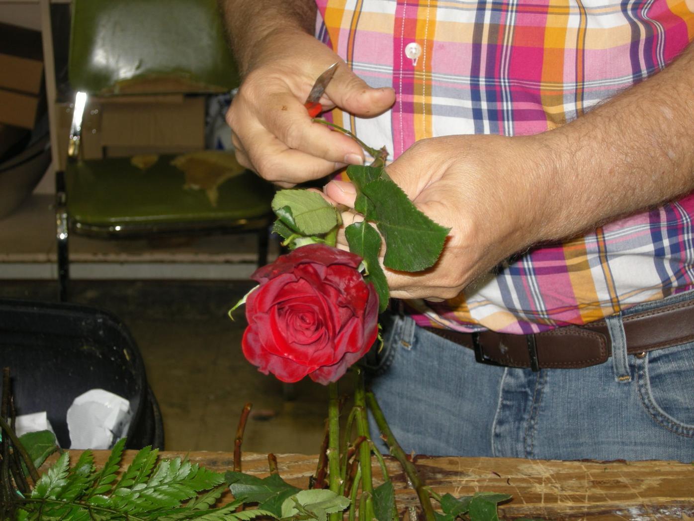 Brownsville florist