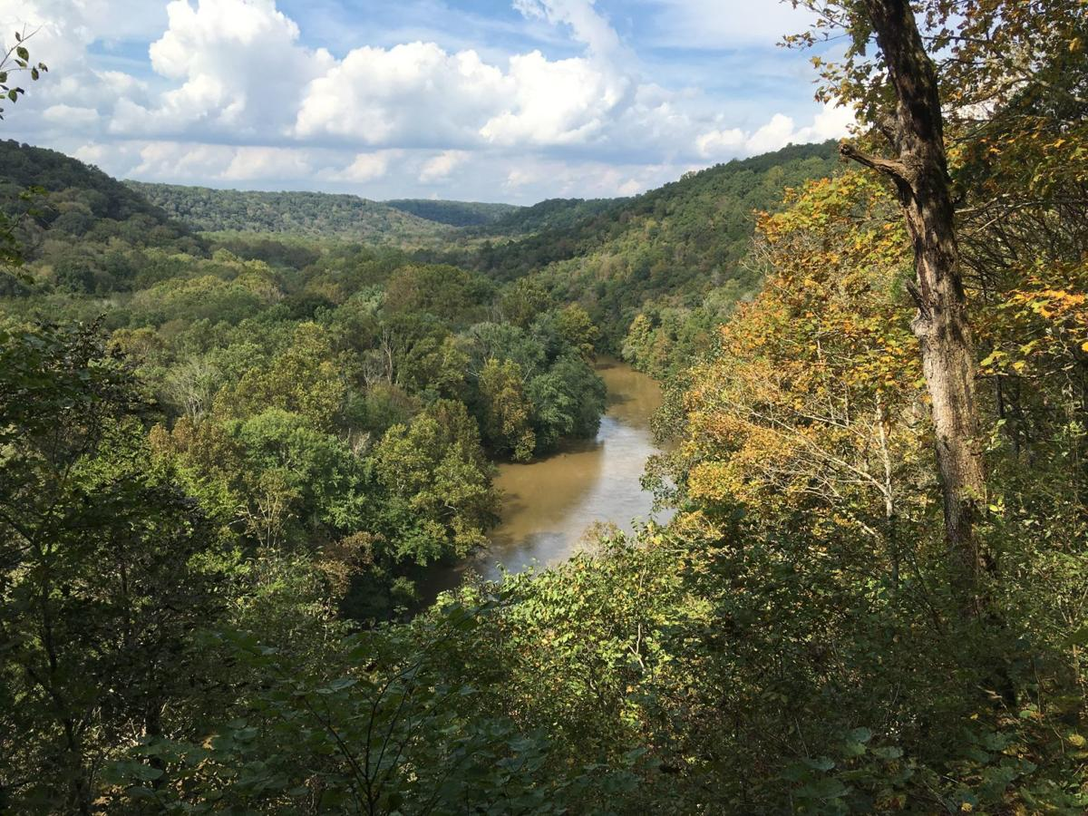 The Green River in Mammoth Cave National Park
