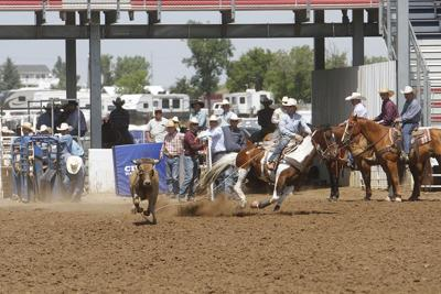 BH Roundup includes steer roping