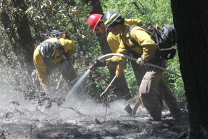 Firefighters contain Crow Peak Fire from running away