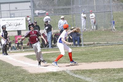 Youth baseball teams set to begin seasons next week