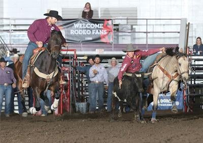 Pro rodeo selects horse of the year awards for the Badlands Circuit