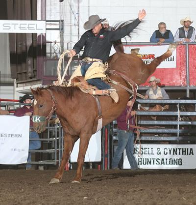 Badlands Circuit selects bucking horses, bulls of the year at circuit finals