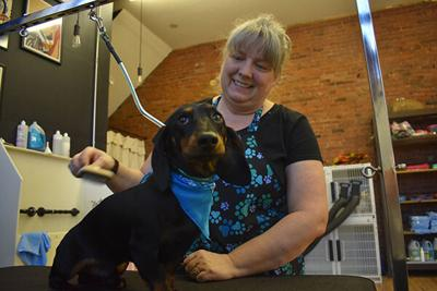 New grooming salon, pet boutique open in Sturgis