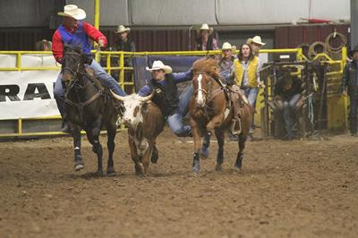 Bhsu Rodeo Team Sweeps All Around Honors Local Sports