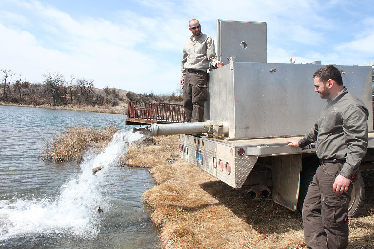 Simple, Cheap Experiments Pay Off In Fish Growth