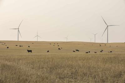 Ørsted completes Willow Creek Wind: Company makes final investment decision on Western Trail Wind