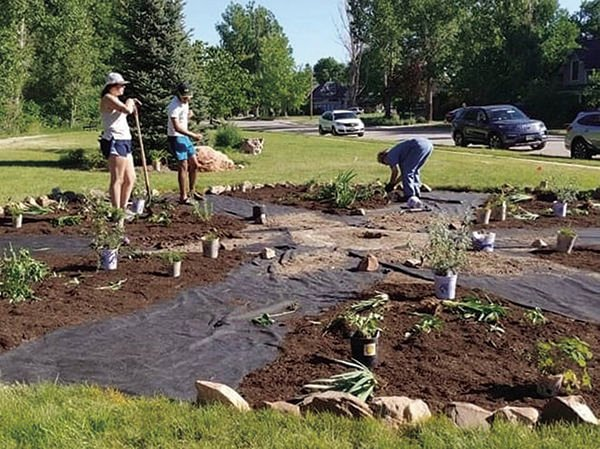 Pollinator garden in Rotary Park something to buzz about