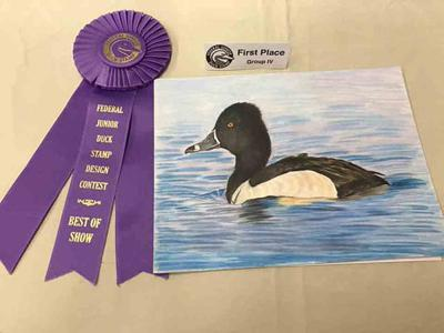 SD Junior Duck Stamp Contest entries due March 25