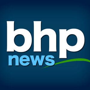 GF&P reports pneumonia outbreak among  Badlands bighorn sheep