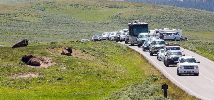 Yellowstone chief says park doesn't need reservation system