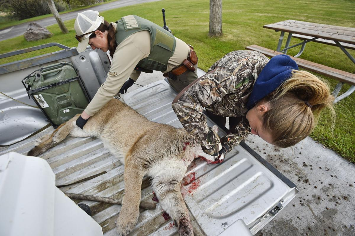 FWP Employee Katie Richter, right, pulls a tooth