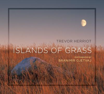 """""""Islands of Grass"""" by Trevor Herriot"""