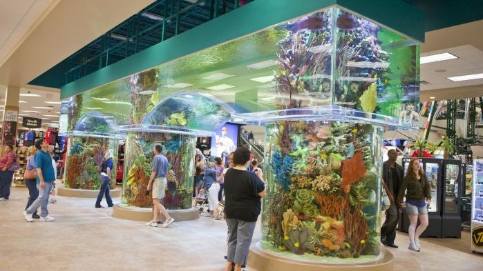 Big Time Planning Goes Into Scheels Project Business