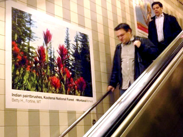 051213 chicago ads.jpg