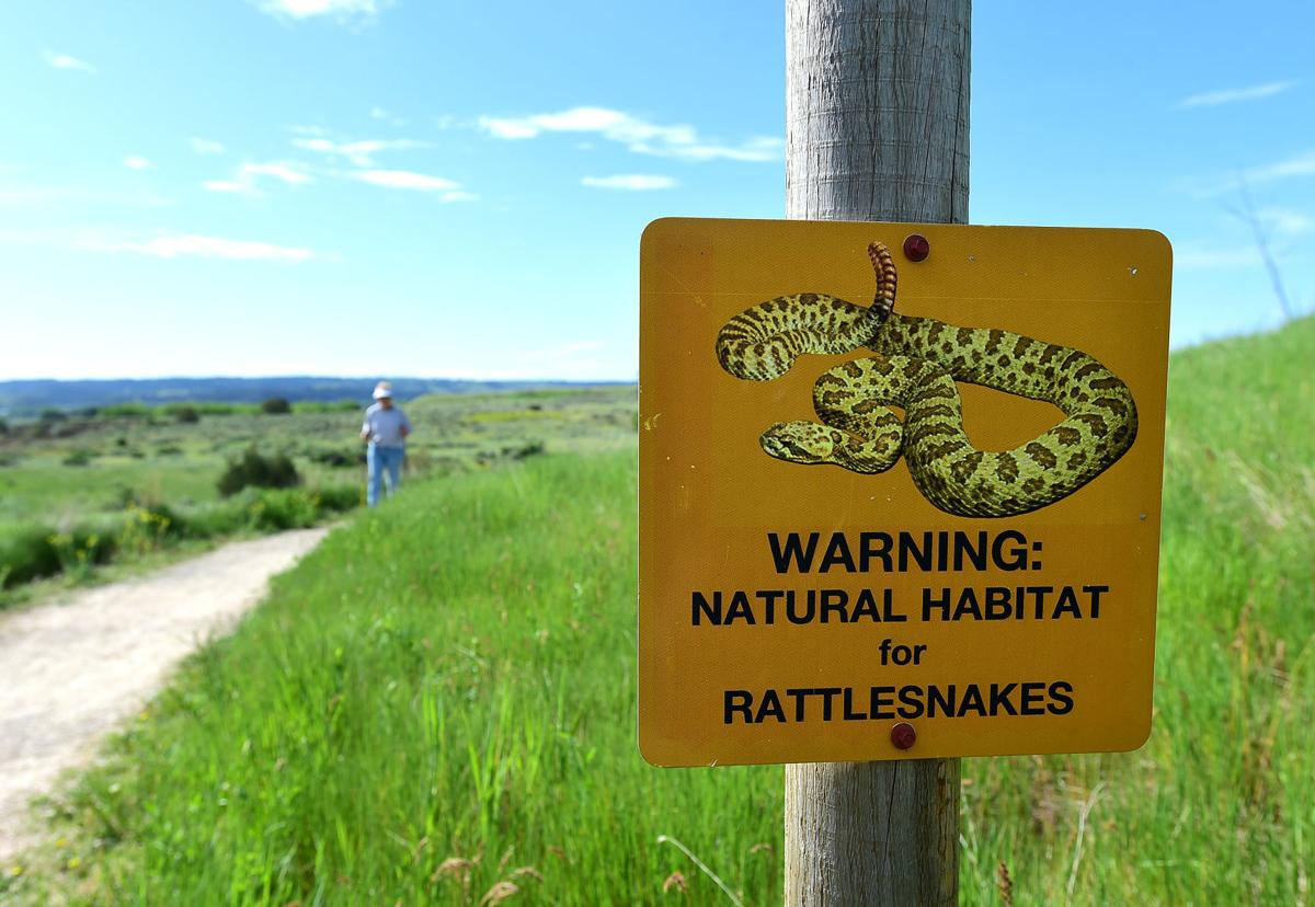 Dover Park snake sign