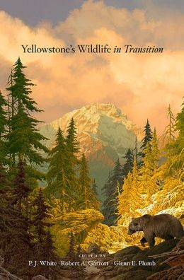 'Yellowstone's Wildlife in Transition'