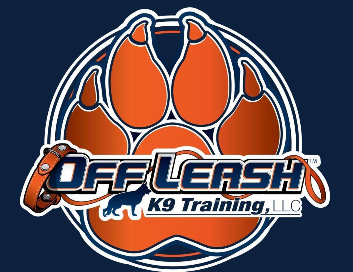 Off Leash K9 Training Billings Mt Billingsgazette Com