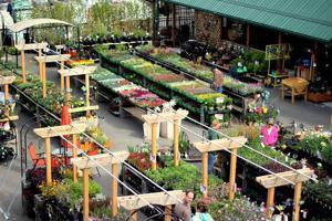 garden-center1.jpg