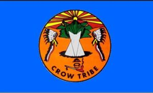 Crow tribal chairman questions validity of attempted recall petition
