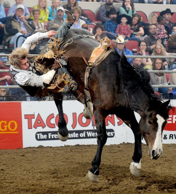 Scheer Stays Sharp With Saddle Bronc Win Rodeo