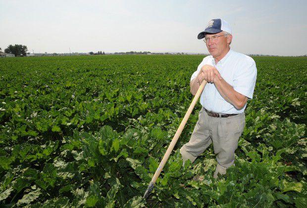 Sugar beet farmer Kelly Brester