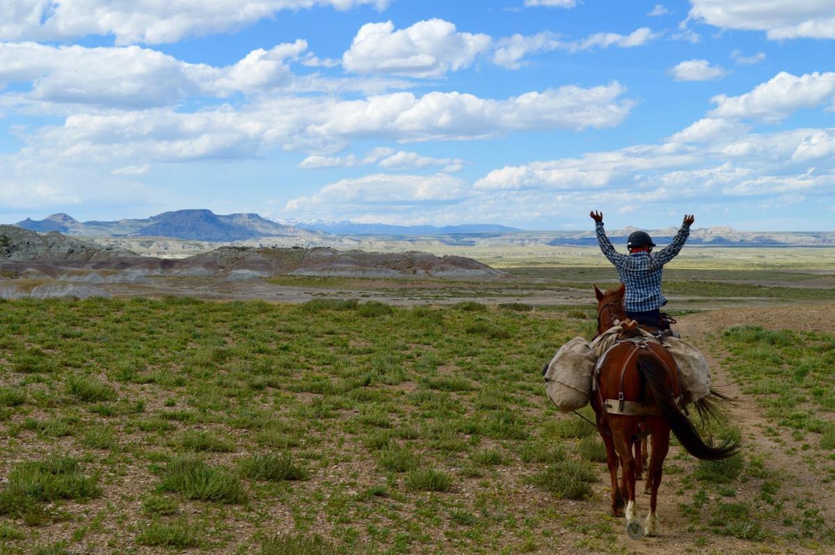 Wyoming Red Desert