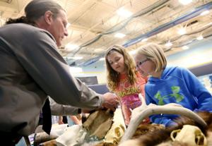 Public invited to region's largest science fair at Montana State University Billings