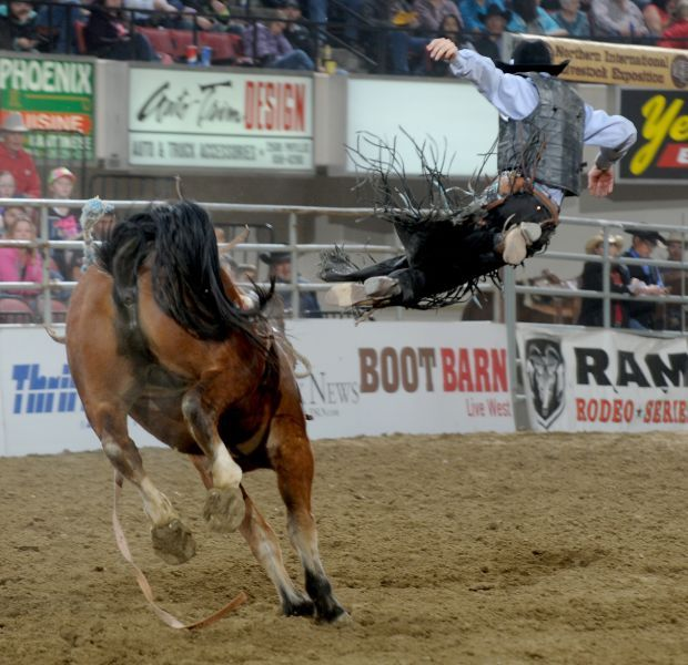 Roping Arena Lights: Scheer Stays Sharp With Saddle Bronc Win