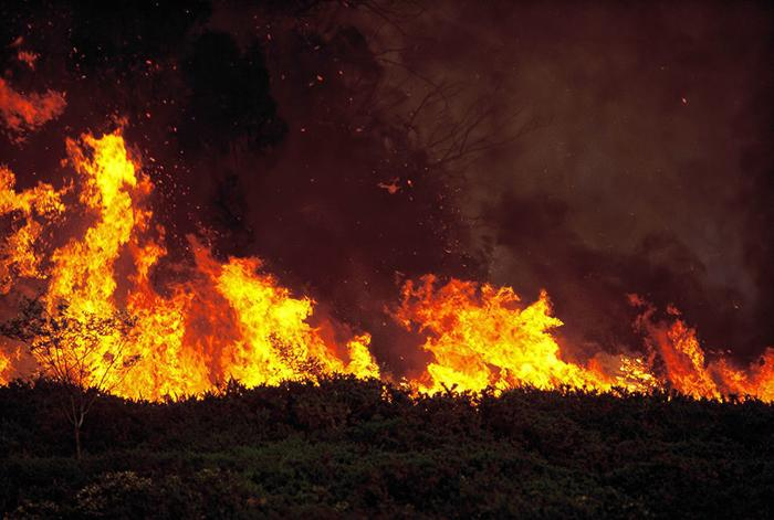 Fire burning south of Wise River near scenic byway